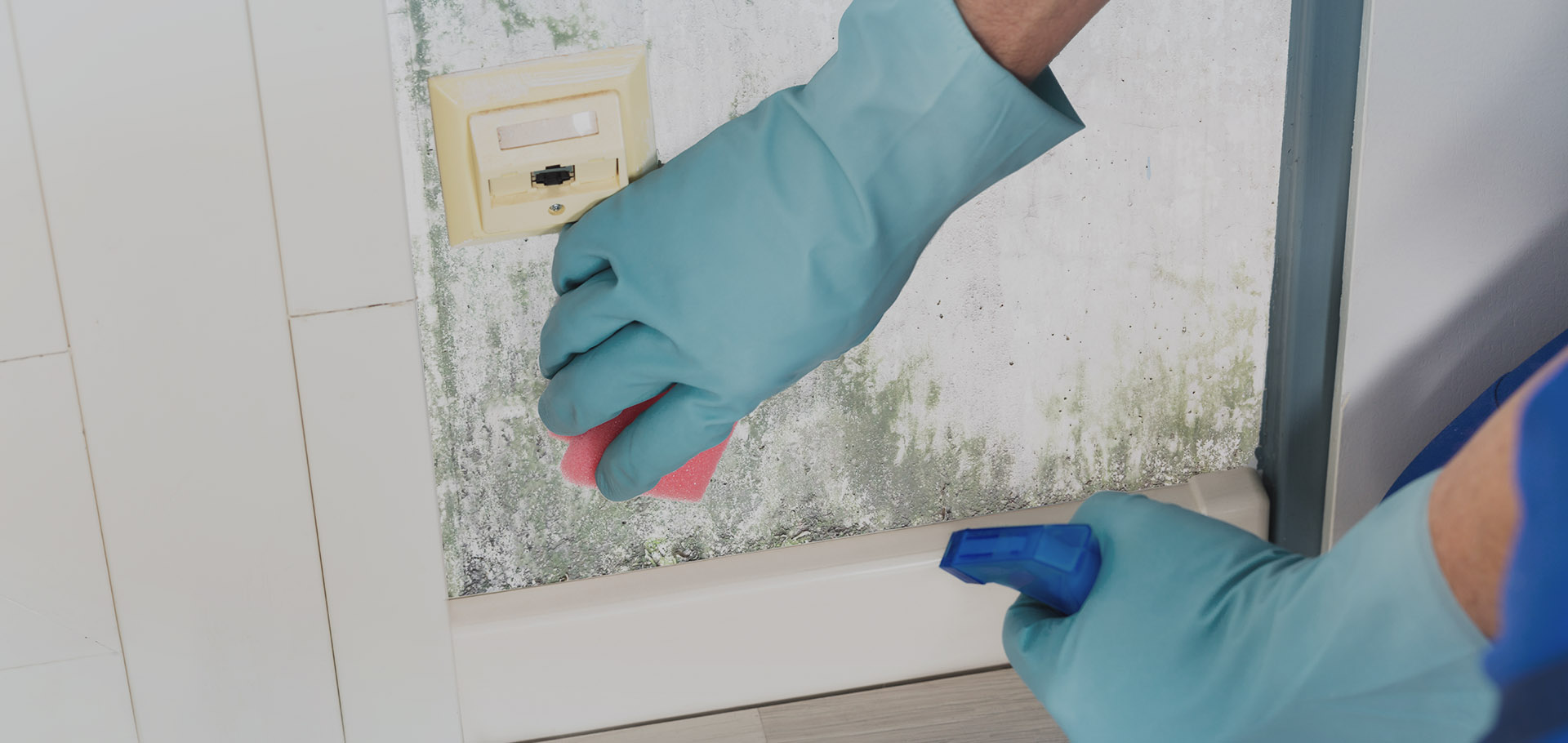Mould Cleaning Singapore
