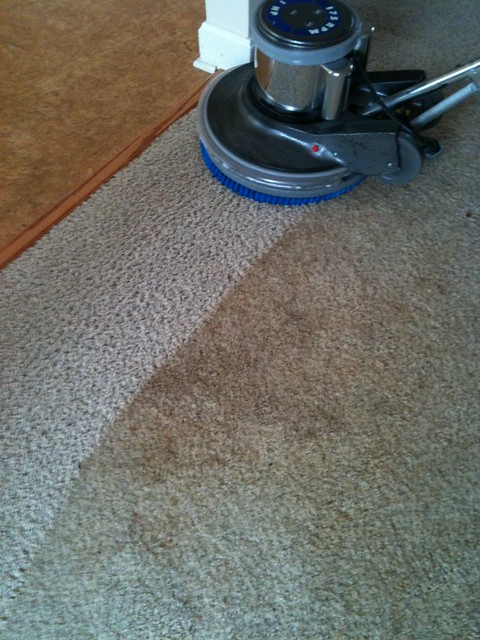 shampoo-carpet-professional-cleaning
