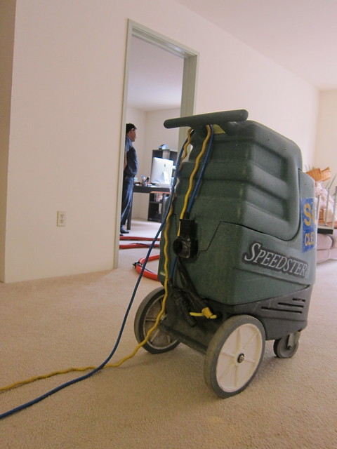 vacuum-cleaner-cleaning-carpet-professional-cost